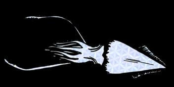 calamar1